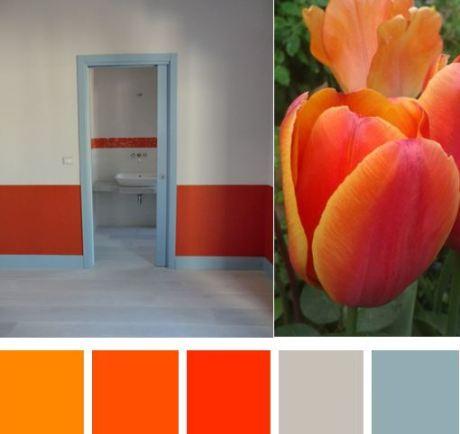 7 Palette